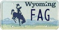 Imitation Wyoming custom plate reading 'FAG'