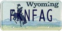 Imitation Wyoming custom plate reading 'FKNFAG'
